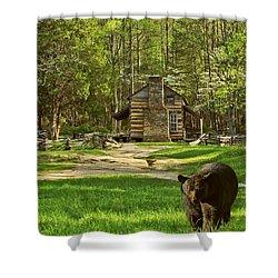 Black Bear Wandering II Shower Curtain