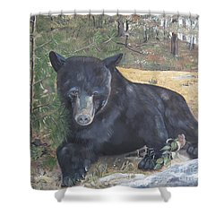 Shower Curtain featuring the painting Black Bear - Wildlife Art -scruffy by Jan Dappen