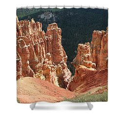 Black Birch Canyon Shower Curtain by Mary Gaines