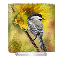 Black Capped Chickadee Checking Out The Sunflowers Shower Curtain