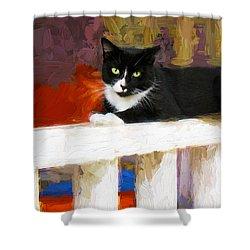 Black Cat In Color Series 2 Shower Curtain