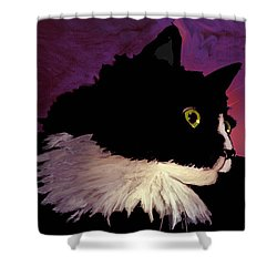 Black Cat On Purple Horizontal Shower Curtain