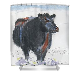 Black Cow Drawing Shower Curtain
