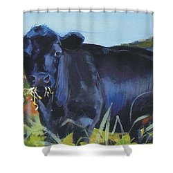 Cows Dartmoor Shower Curtain