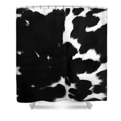 Shower Curtain featuring the photograph Black Cowhide by Gunter Nezhoda