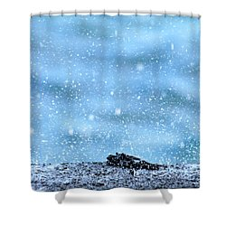 Black Crab In The Blue Ocean Spray Shower Curtain by Lehua Pekelo-Stearns