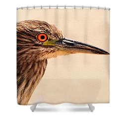 Black Crowned Night Heron 4 Shower Curtain by Bob and Nadine Johnston