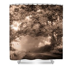 Black Dog On A Misty Road. Misty Roads Of Scotland Shower Curtain by Jenny Rainbow