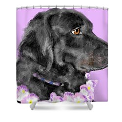 Black Dog Pretty In Lavender Shower Curtain by Lois Ivancin Tavaf