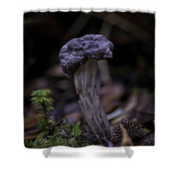 Shower Curtain featuring the photograph Black Elfin Saddle by Betty Depee