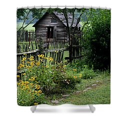 Shower Curtain featuring the photograph Black-eyed Susans by Cathy Harper