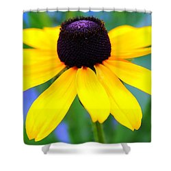 Shower Curtain featuring the photograph Black Eyed Susan by Judy Palkimas