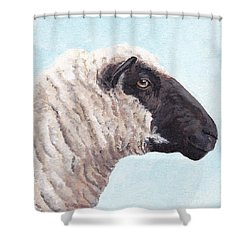 Black Face Sheep Shower Curtain by Charlotte Yealey