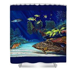 Black Grouper Reef Shower Curtain