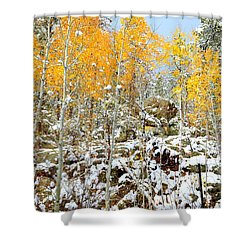 Black Hills Boulders Shower Curtain by Clarice  Lakota