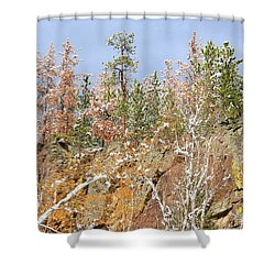 Black Hills Color Palette Shower Curtain by Clarice  Lakota