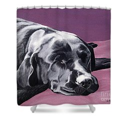 Black Labrador Beauty Sleep Shower Curtain
