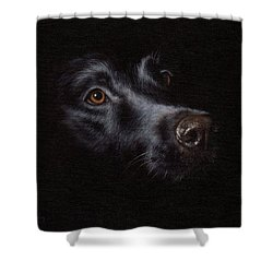 Black Labrador Painting Shower Curtain