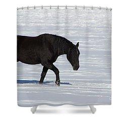 Shower Curtain featuring the photograph Black Magic by Fiona Kennard
