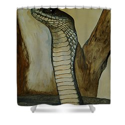 Black Mamba Shower Curtain by Tracey Beer