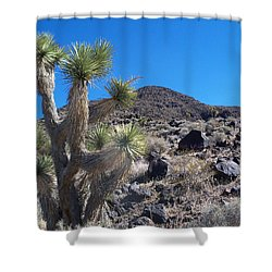 Shower Curtain featuring the photograph Black Mountain Yucca by Alan Socolik