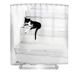 Black On White 2 Shower Curtain by Lisa Parrish