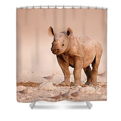 Black Rhinoceros Baby Shower Curtain
