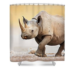 Black Rhinoceros Shower Curtain by Johan Swanepoel