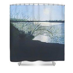 Black Swan Lake Shower Curtain