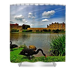 Black Swans At Leeds Castle II Shower Curtain