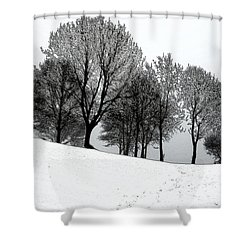 Shower Curtain featuring the photograph Black Trees by Randi Grace Nilsberg