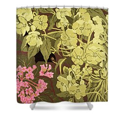 Blackbird In The Hellebores Shower Curtain by Carol Walklin