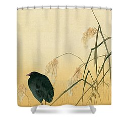 Blackbird Shower Curtain by Japanese School