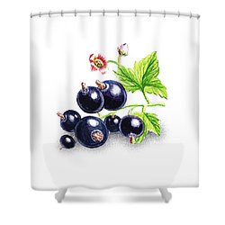 Shower Curtain featuring the painting Blackcurrant Still Life by Irina Sztukowski