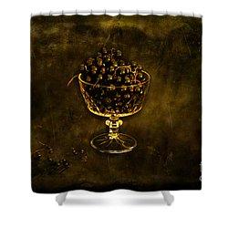 Blackcurrants Shower Curtain by Randi Grace Nilsberg