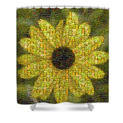 Blackeyed Suzy Mosaic Shower Curtain