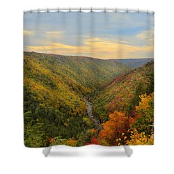 Blackwater Gorge With Fall Leaves Shower Curtain by Dan Friend
