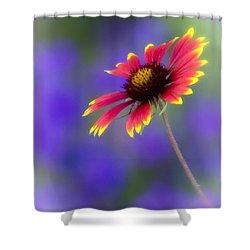 Blanket Flower  Shower Curtain by Saija  Lehtonen