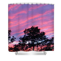 Blazing Pines Shower Curtain