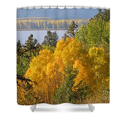Blazing Yellow Shower Curtain