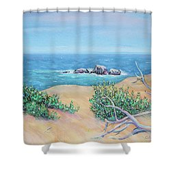 Shower Curtain featuring the painting Bleached Cedar And Ocean Rocks by Asha Carolyn Young