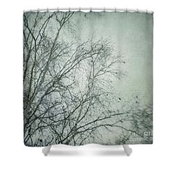 bleakly I Shower Curtain by Priska Wettstein