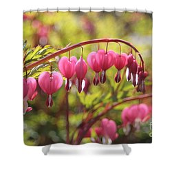 Bleeding Heart Shower Curtain by Barbara Bardzik