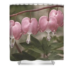Bleeding Hearts Composite Shower Curtain
