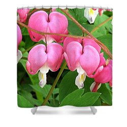 Bleeding Hearts On Parade Shower Curtain