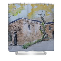 Blessed Mother's Home Shower Curtain