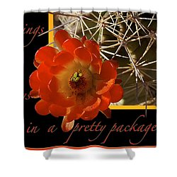 Blessings Shower Curtain by Phyllis Denton