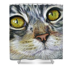 Stunning Cat Painting Shower Curtain by Michelle Wrighton