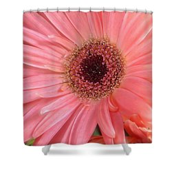Bliss Shower Curtain by Rory Sagner