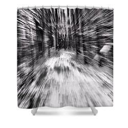 Blizzard In The Forest Shower Curtain by Dan Sproul